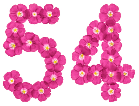Arabic numeral 54, fifty four, from pink flowers of flax, isolated on white background