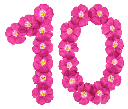 Arabic numeral 10, ten, from pink flowers of flax, isolated on white background