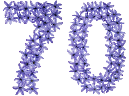 Numeral 70, seventy, from natural flowers of hyacinth, isolated on white background