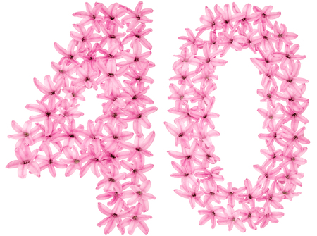 Numeral 40, forty, four, from natural flowers of hyacinth, isolated on white background