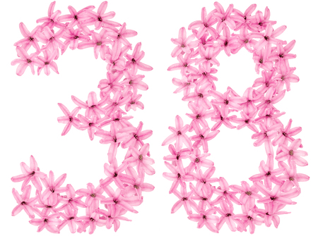 Numeral 38, thirty eight, from natural flowers of hyacinth, isolated on white background