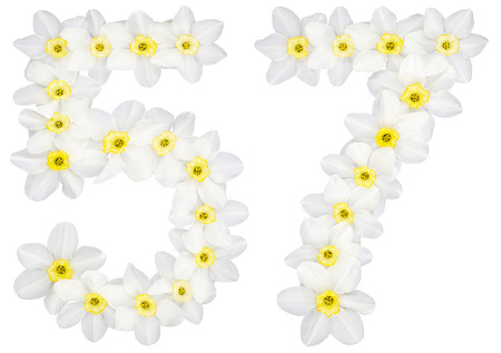 Numeral 57, fifty seven, from natural white flowers of Daffodil (narcissus), isolated on white background