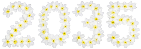 Inscription 2035, from natural white flowers of Daffodil (narcissus), isolated on white background Фото со стока
