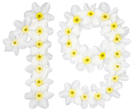 Numeral 19, nineteen, from natural white flowers of Daffodil (narcissus), isolated on white background Stock Photo