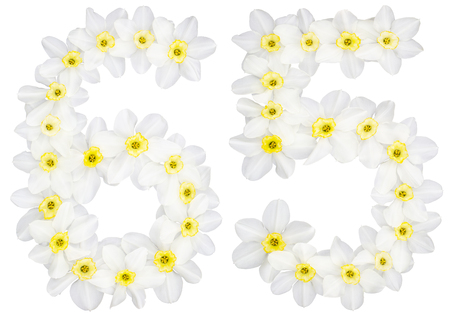 Numeral 65, sixty five, from natural white flowers of Daffodil (narcissus), isolated on white background