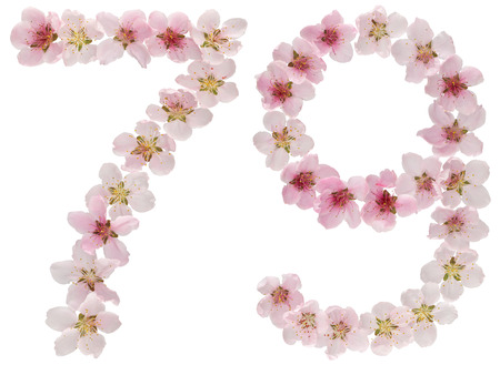 Numeral 79, seventy nine, from natural pink flowers of peach tree, isolated on white background