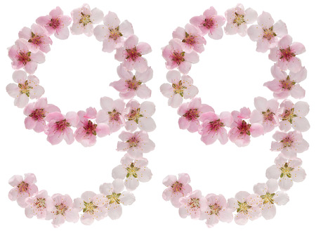 Numeral 99, ninety nine, from natural pink flowers of peach tree, isolated on white background Stock Photo