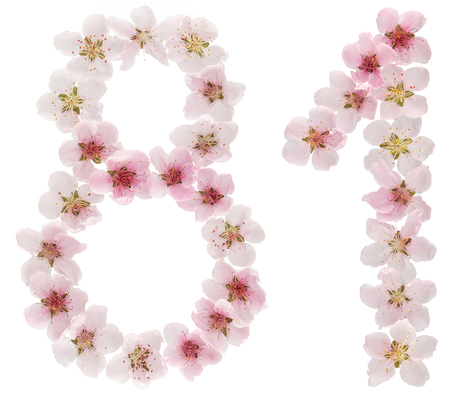 Numeral 81, eighty one, from natural pink flowers of peach tree, isolated on white background Reklamní fotografie