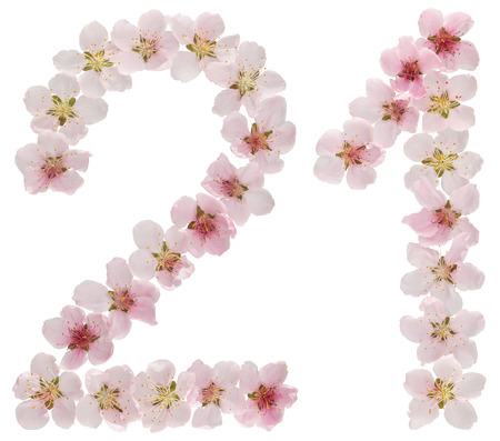 Numeral 21, twenty one, from natural pink flowers of peach tree, isolated on white background