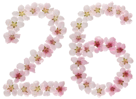 Numeral 26, twenty six, from natural pink flowers of peach tree, isolated on white background