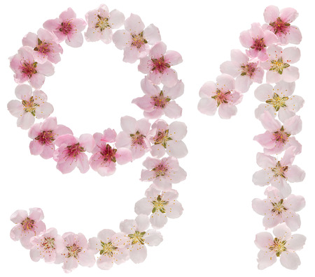 Numeral 91, ninety one, from natural pink flowers of peach tree, isolated on white background