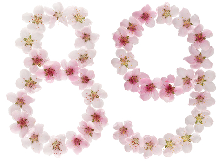 Numeral 89, eighty nine, from natural pink flowers of peach tree, isolated on white background