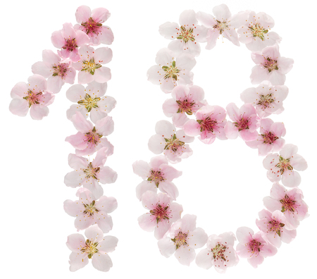 Numeral 18, eighteen, from natural pink flowers of peach tree, isolated on white background Archivio Fotografico