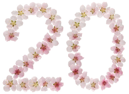 Numeral 20, twenty, from natural pink flowers of peach tree, isolated on white background