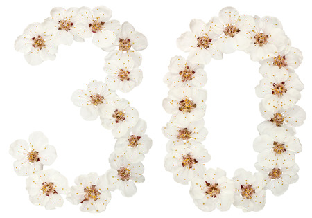 Numeral 30, thirty, from natural white flowers of apricot tree, isolated on white background Фото со стока