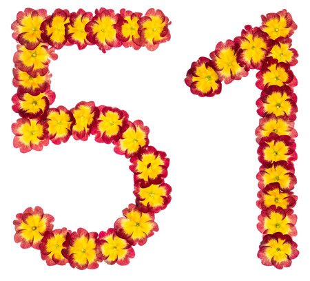 Numeral 51, fifty one, fifty, from natural flowers of primula, isolated on white background Stock Photo