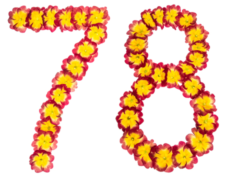 Numeral 78, seventy eight, from natural flowers of primula, isolated on white background