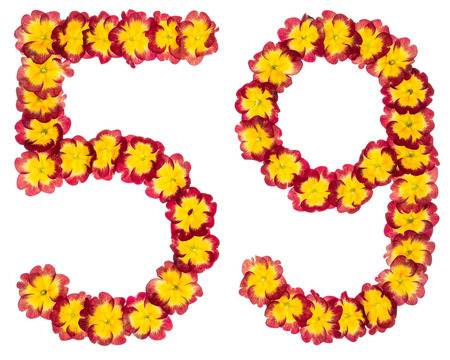 Numeral 59, fifty nine, from natural flowers of primula, isolated on white background