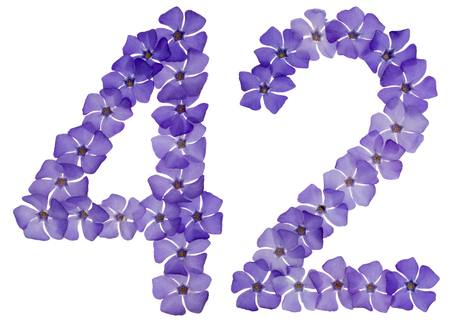 Numeral 42, forty two, from natural blue flowers of periwinkle, isolated on white background 免版税图像