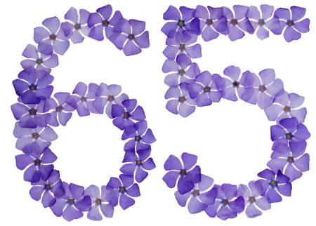 Numeral 65, sixty five, from natural blue flowers of periwinkle, isolated on white background