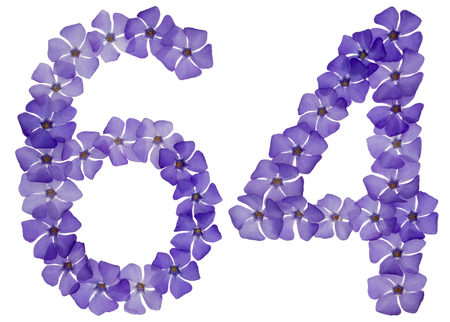 Numeral 64, sixty four, from natural blue flowers of periwinkle, isolated on white background Фото со стока