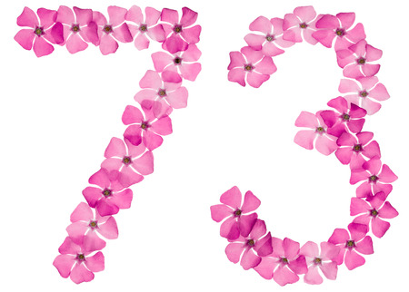 Numeral 73, seventy three, from natural pink flowers of periwinkle, isolated on white background