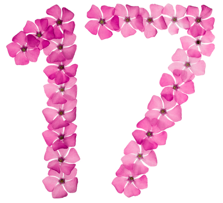 Numeral 17, seventeen, from natural pink flowers of periwinkle, isolated on white background