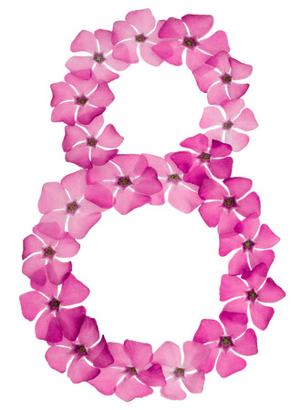 Numeral 8, eight, from natural pink flowers of periwinkle, isolated on white background