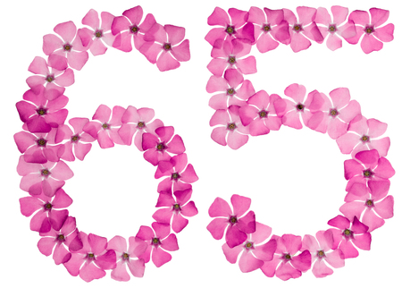 Numeral 65, sixty five, from natural pink flowers of periwinkle, isolated on white background