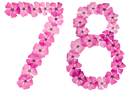 Numeral 78, seventy eight, from natural pink flowers of periwinkle, isolated on white background