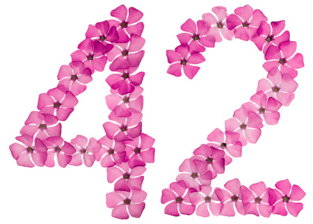 Numeral 42, forty two, from natural pink flowers of periwinkle, isolated on white background 免版税图像