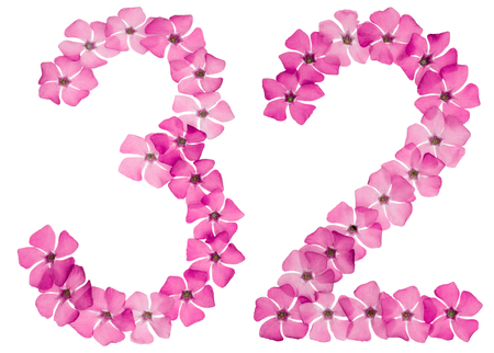 Numeral 32, thirty two, from natural pink flowers of periwinkle, isolated on white background