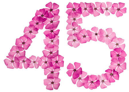Numeral 45, forty five, from natural pink flowers of periwinkle, isolated on white background