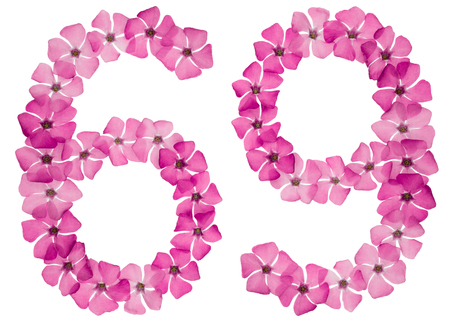 Numeral 69, sixty nine, from natural pink flowers of periwinkle, isolated on white background