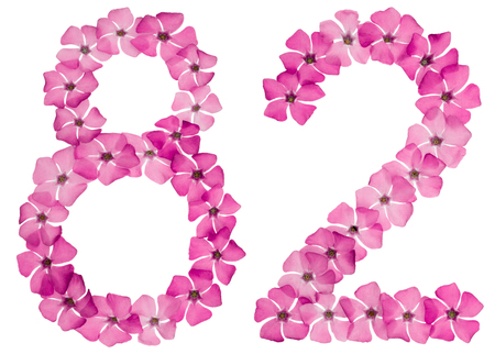 Numeral 82, eighty two, from natural pink flowers of periwinkle, isolated on white background