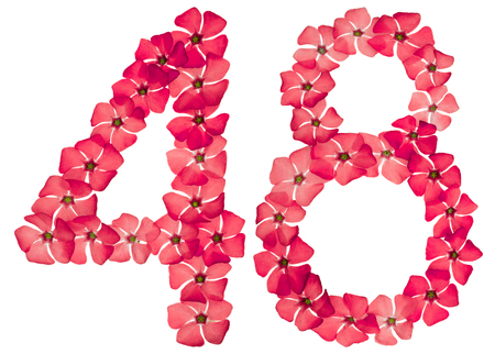 Numeral 48, forty eight, from natural red flowers of periwinkle, isolated on white background