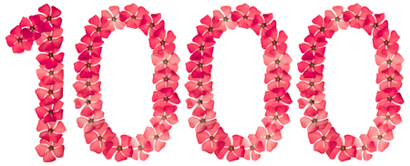 Numeral 1000, one thousand, from natural red flowers of periwinkle, isolated on white background