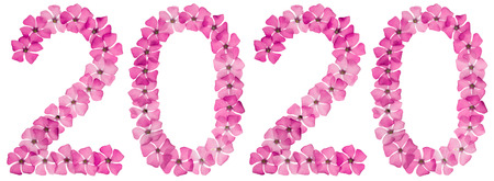 Inscription 2020, from natural pink flowers of periwinkle, isolated on white background