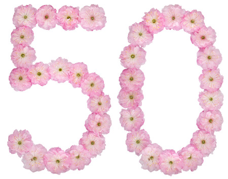 Numeral 50, fifty, from natural pink flowers of almond tree, isolated on white background