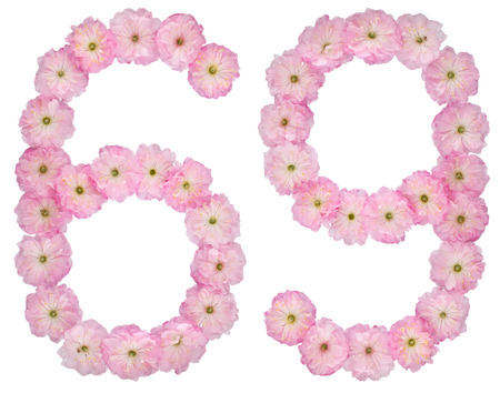 Numeral 69, sixty nine, from natural pink flowers of almond tree, isolated on white background