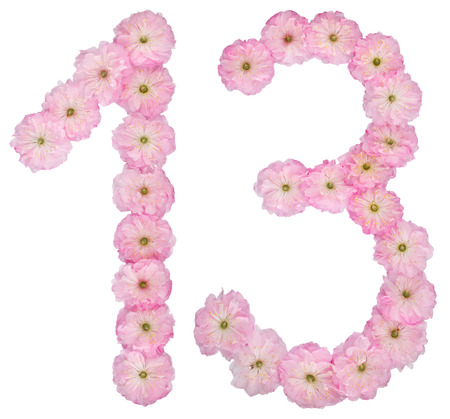Numeral 13, thirteen, from natural pink flowers of almond tree, isolated on white background Stock Photo