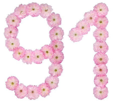 Numeral 91, ninety one, from natural pink flowers of almond tree, isolated on white background