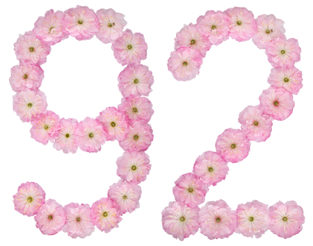 Numeral 92, ninety two, from natural pink flowers of almond tree, isolated on white background