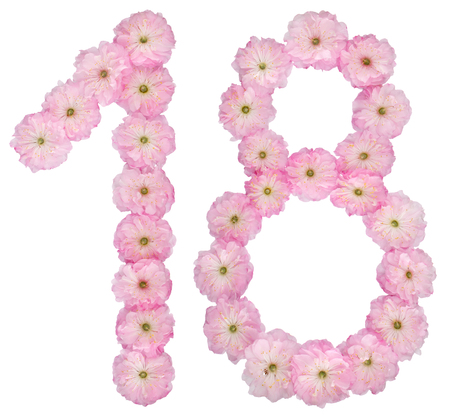 Numeral 18, eighteen, from natural pink flowers of almond tree, isolated on white background