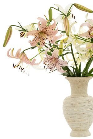 Bouquet of lily flower, isolated on white background