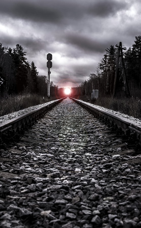 forest railroad: railroad in forest twilight