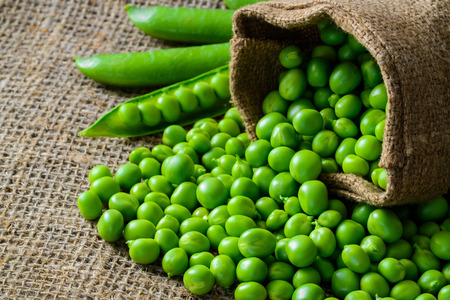 harvest: hearthy fresh green peas and pods on rustic fabric background