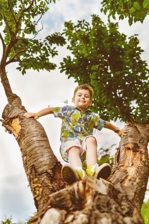 climbed: Happy little the boy climbed up a tree.