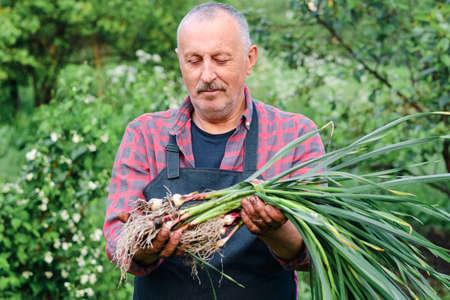 farmer holding in hands harvest of organic fresh garlic