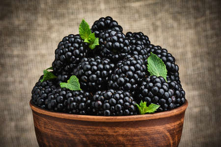 Blackberries and leaves of green mint in bowl